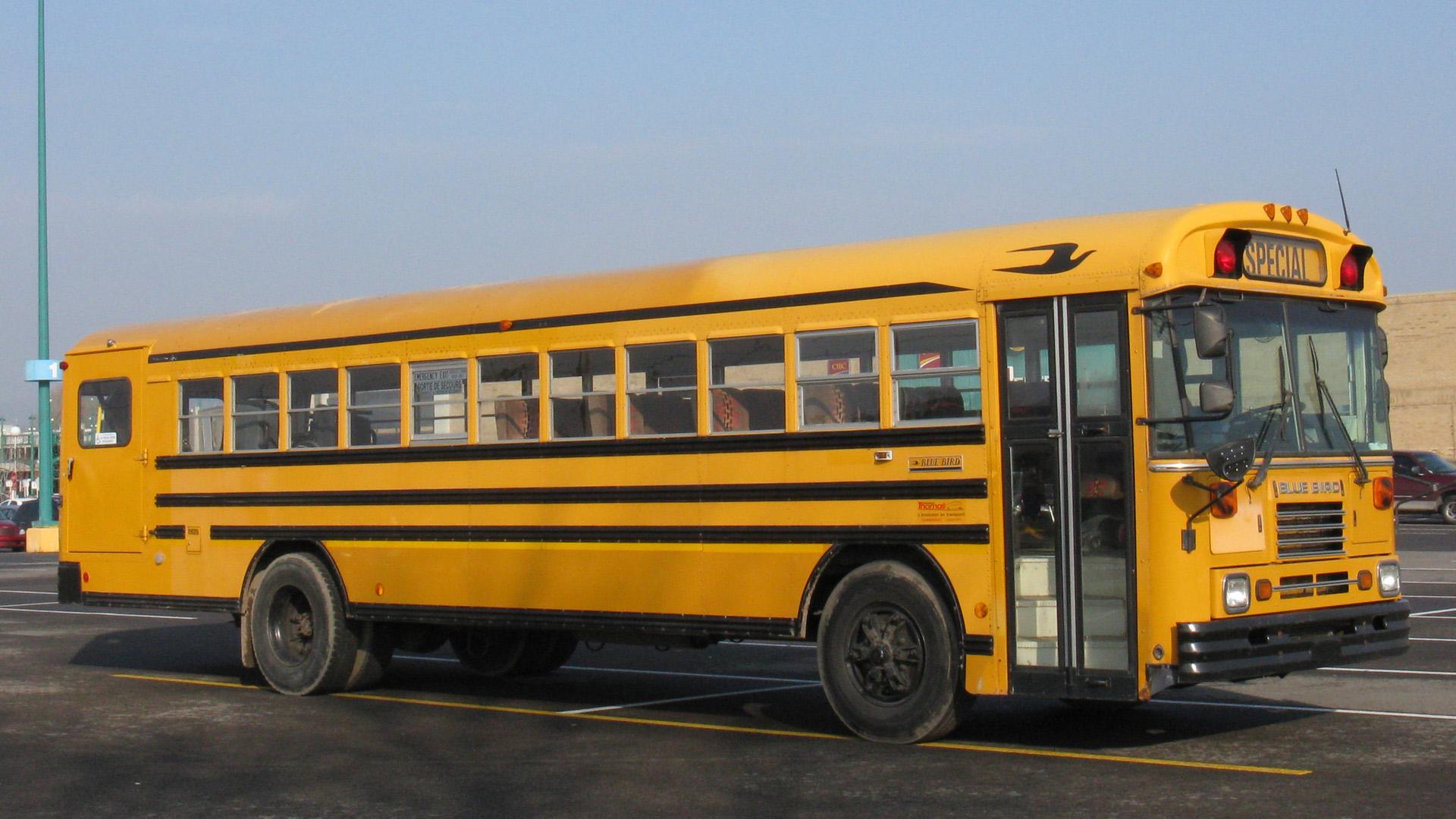 Blue Bird Bus >> TopWorldAuto >> Photos of Blue Bird School Bus - photo ...