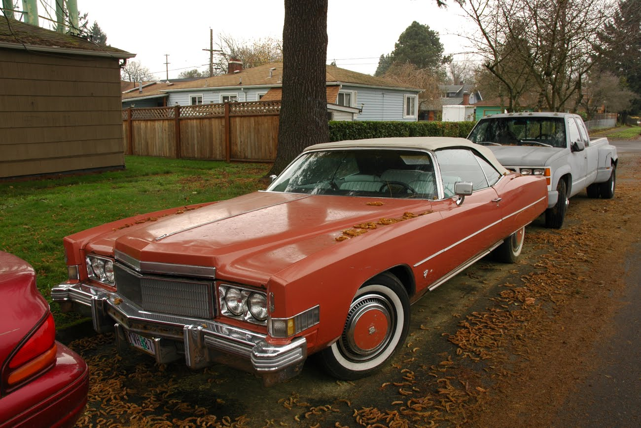 TopWorldAuto >> Photos of Cadillac Fleetwood Eldorado convertible