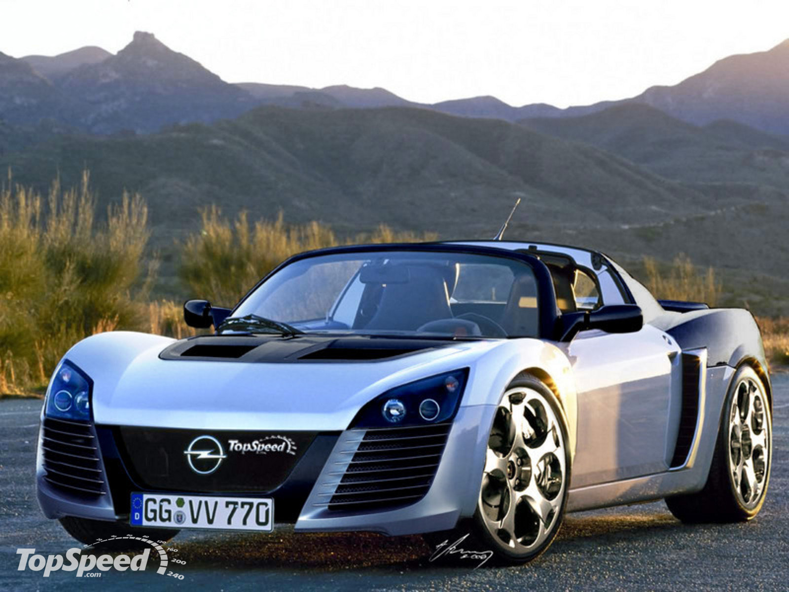 OPEL is the producer of the 2001 Opel Speedster. This car was first launched