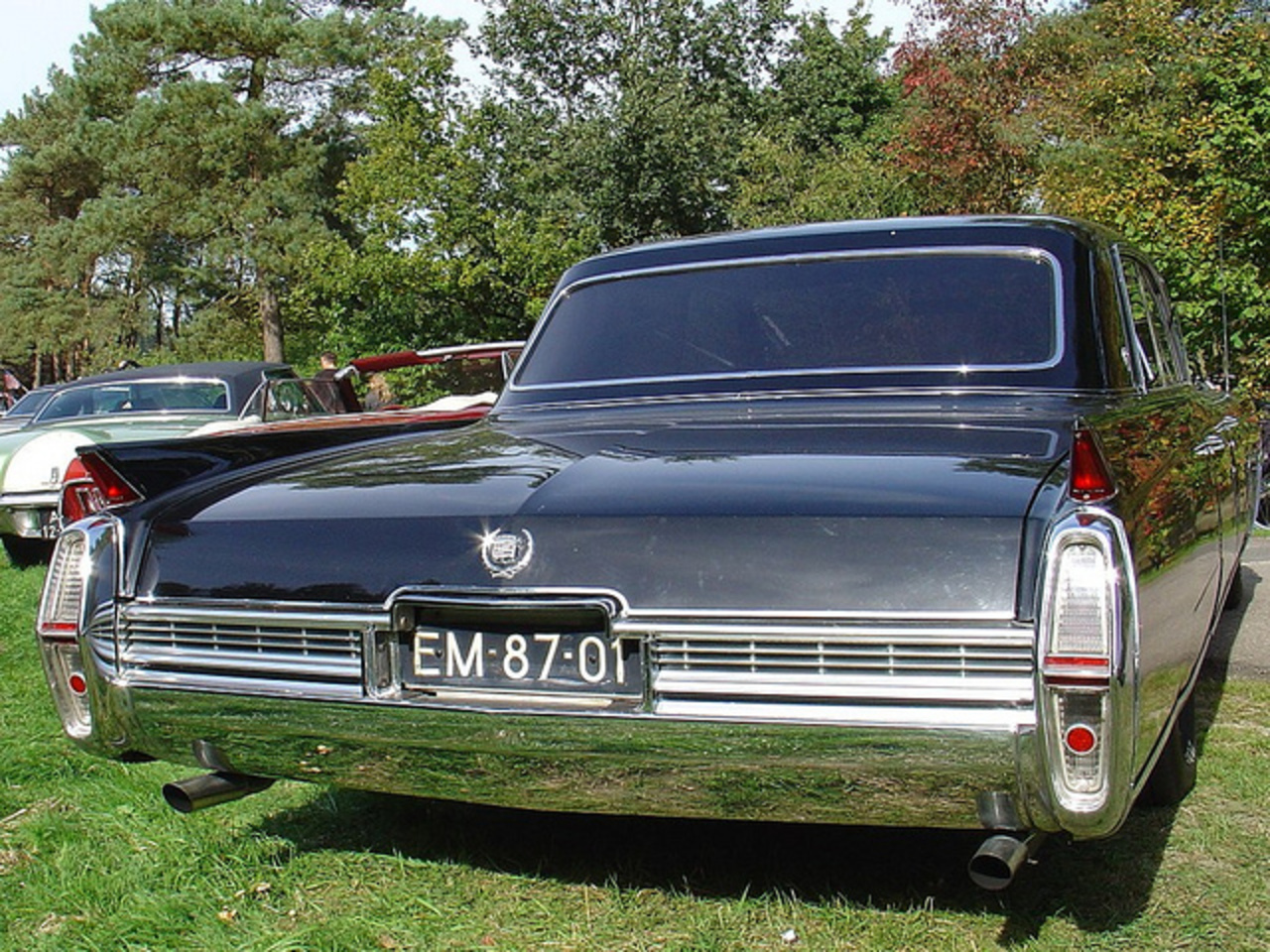 Cadillac Fleetwood 60 Special 1964 | Flickr - Photo Sharing!
