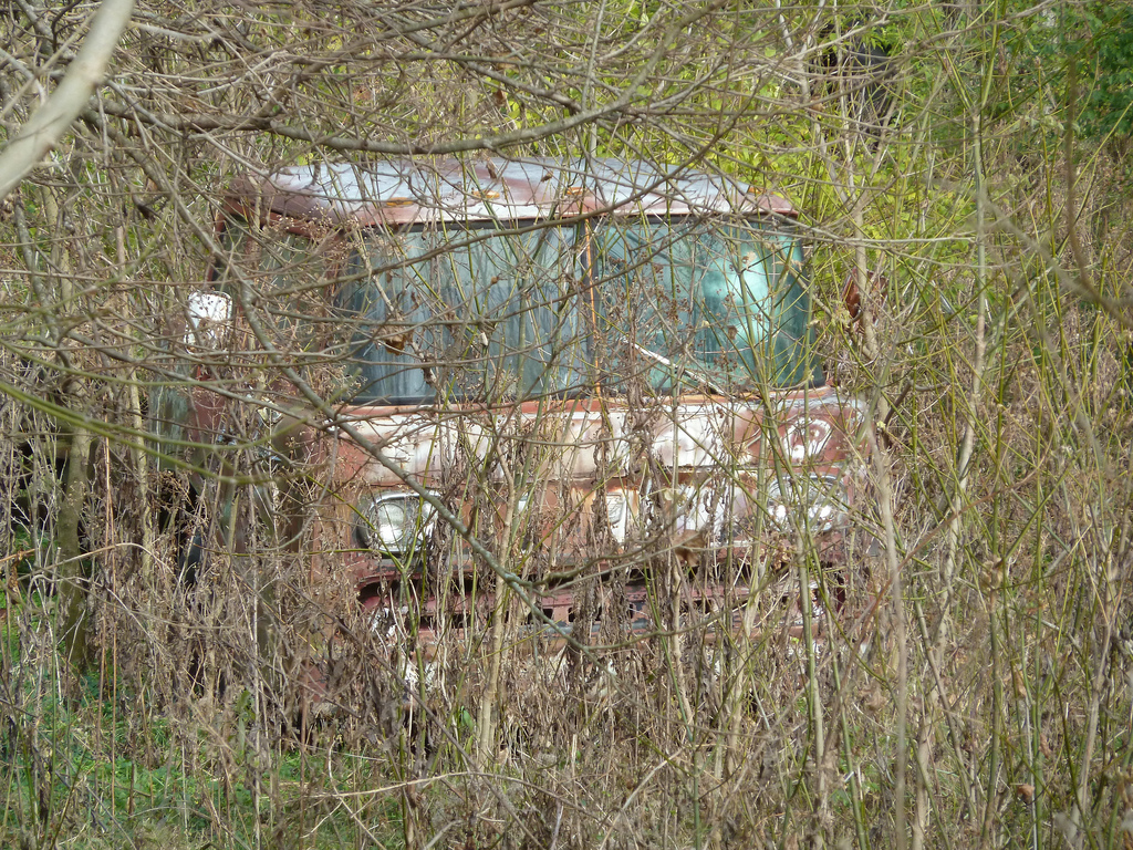 Ford C-8000 Stranded In The Jungle | Flickr - Photo Sharing!