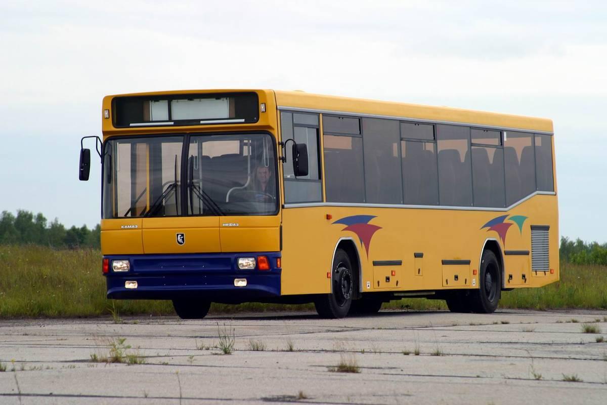 хранения картинки камазов автобусов внезапно стал