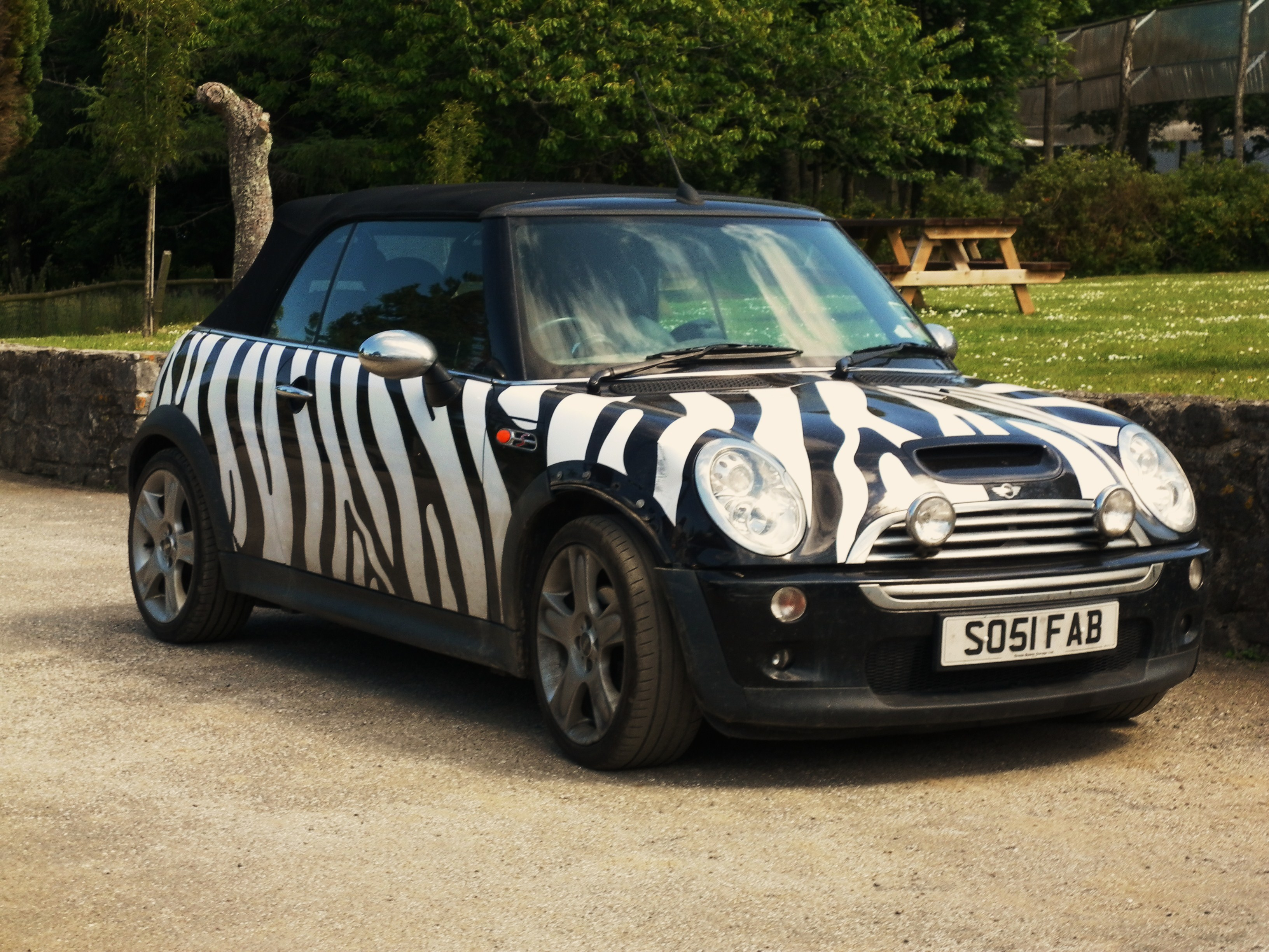 Mini Cooper S, Safari style! | Flickr - Photo Sharing!