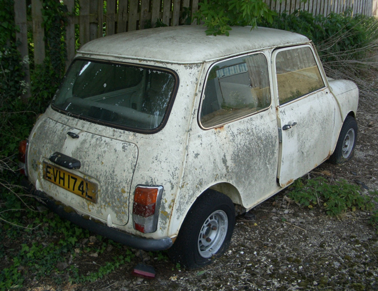 1972 Morris Mini 850 - in white & mould | Flickr - Photo Sharing!