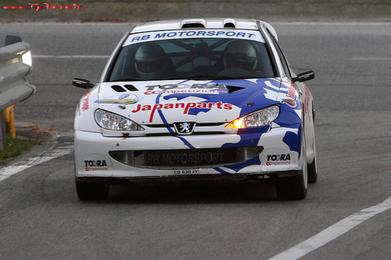 Peugeot 206 WRC (1999) | Flickr - Photo Sharing!