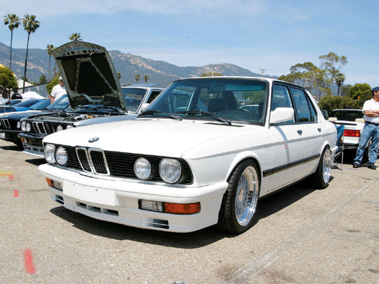 BMW 528e - huge collection of cars, auto news and reviews, car vitals,