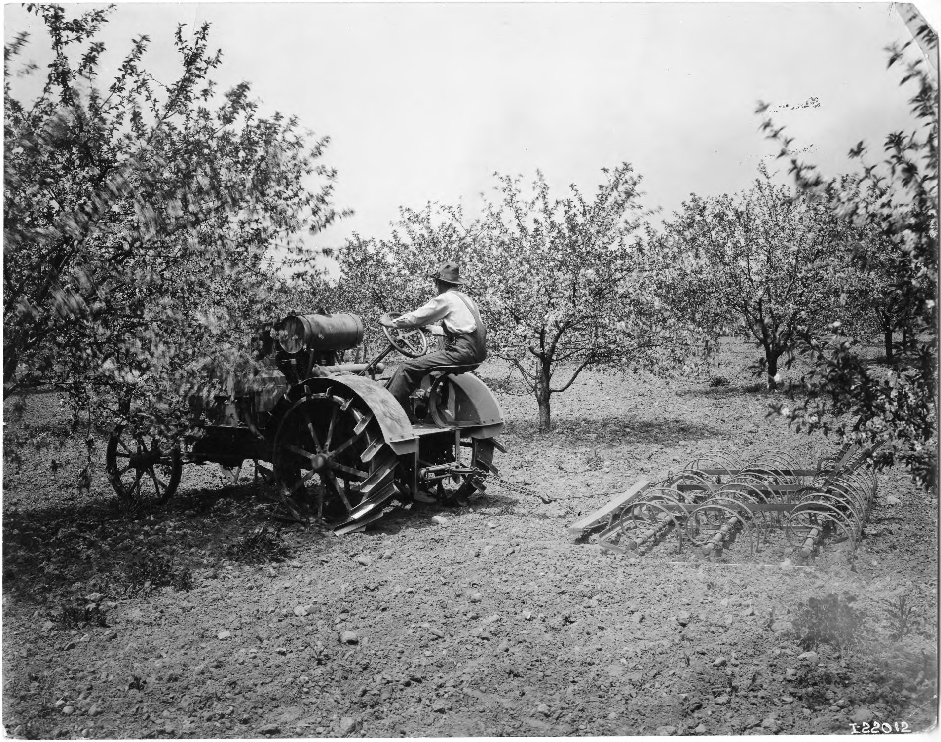 International Harvester Orchard Tractor