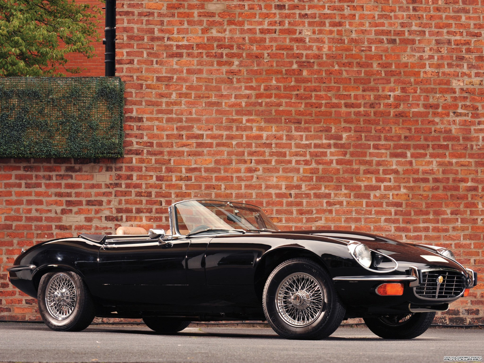 Jaguar E-type V12 roadster