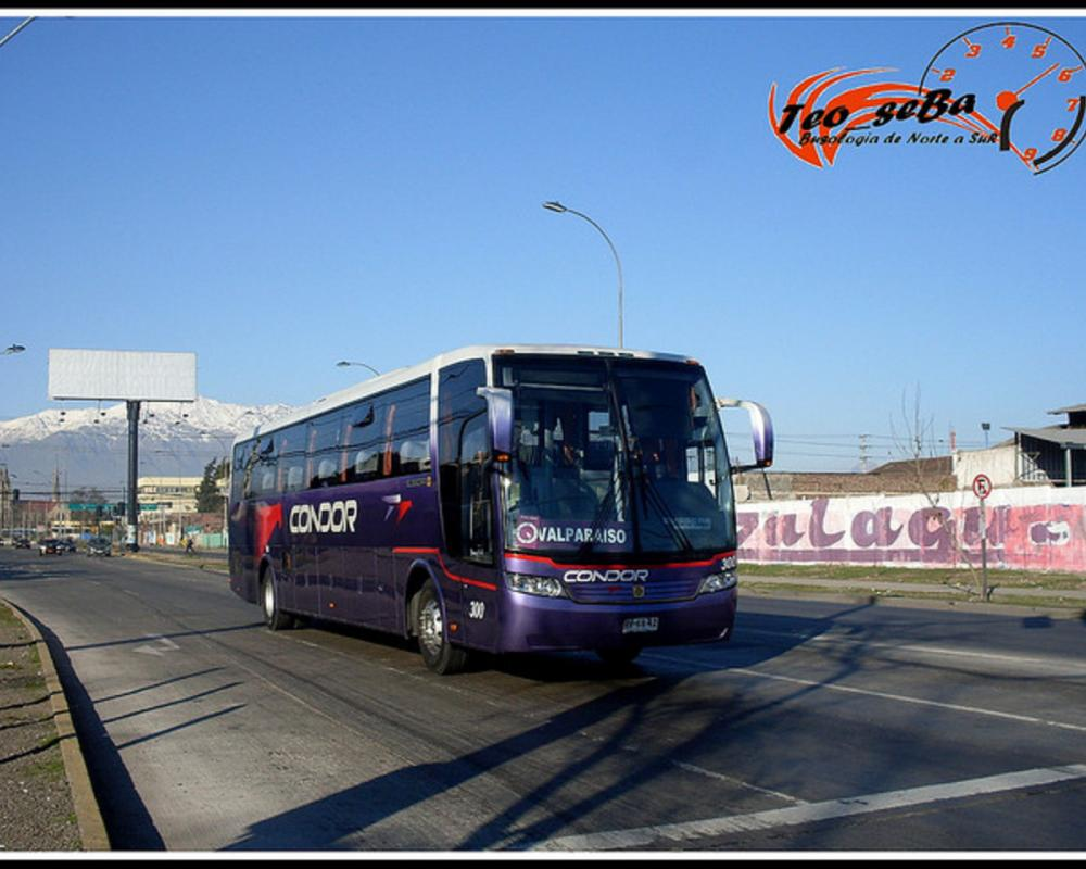 Condor Bus.- | Flickr - Photo Sharing!