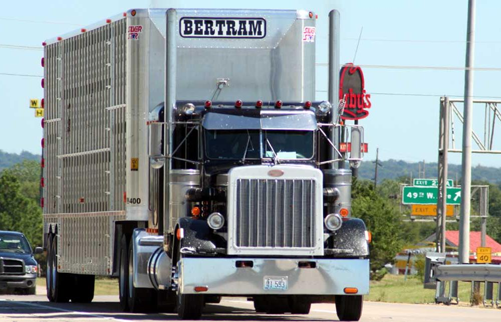 Peterbilt 359 Souther Classic – United States