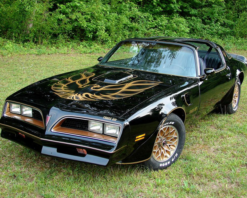 This is the Pontiac Firebird Trans Am. I have loved this car ever since I