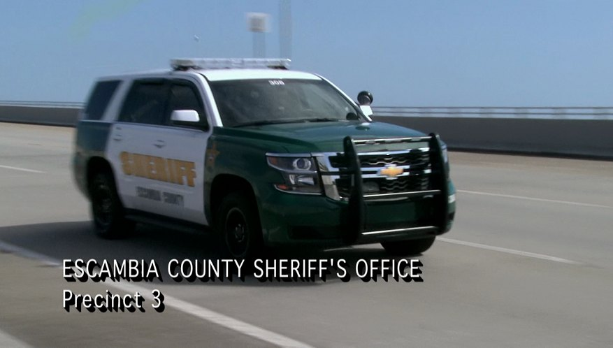 "IMCDb.org: 2015 Chevrolet Tahoe PPV in ""Cops, 1989-2020"""
