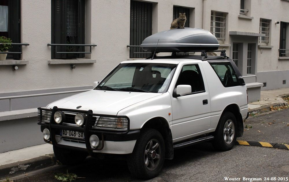 Opel Frontera Sport 1996 + cat | Sports, Cats, Car