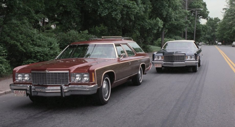 "IMCDb.org: 1974 Chevrolet Caprice Estate Wagon in ""The ..."