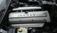 Jaguar Sovereign 32